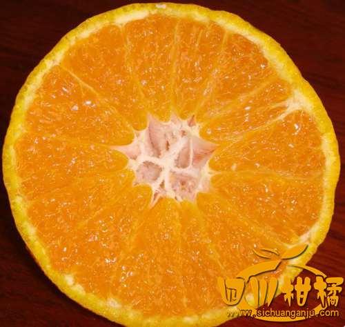 全国柑橘不知火丑柑技术的示范区