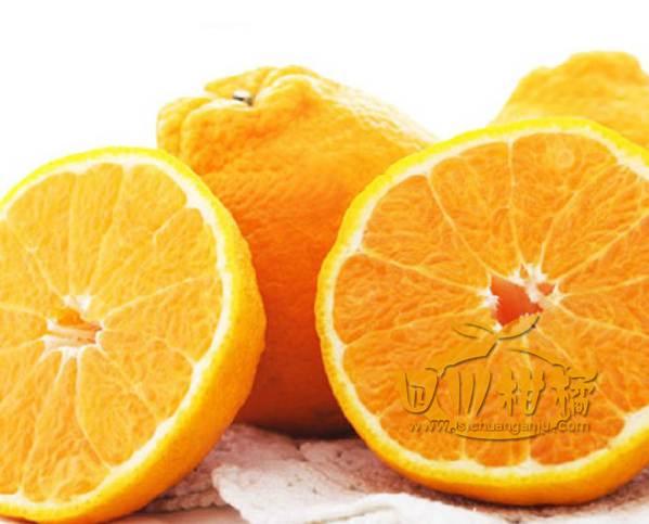 成都柑橘采摘以后的管理就非常的关键