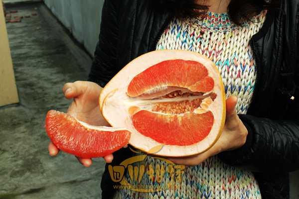 三红蜜柚 红心柚
