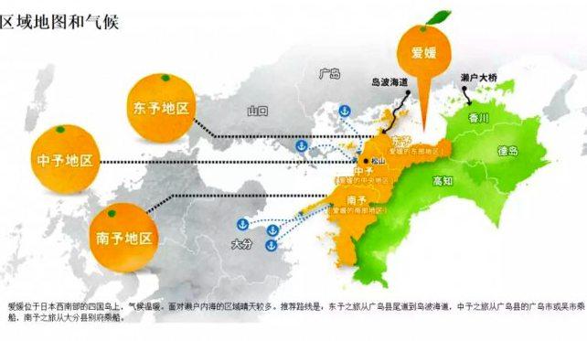 日本爱媛果树研究所培育了数不清的柑橘品种