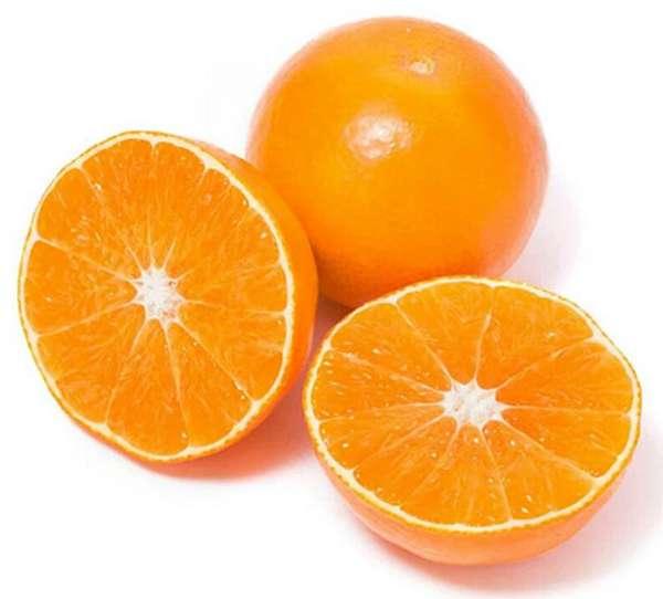 杂交柑橘爱媛38号